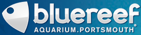 Blue Reef Aquarium Portsmouth discount code